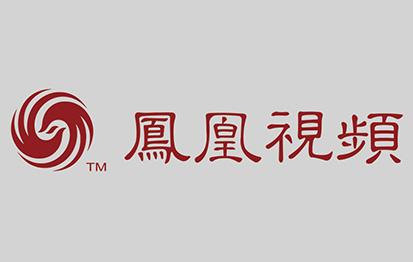 """""""凤凰视频""""数据库"""