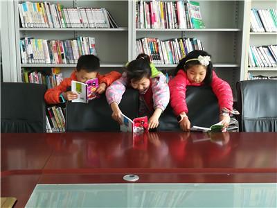 延庆区大榆树镇程家营村图书室